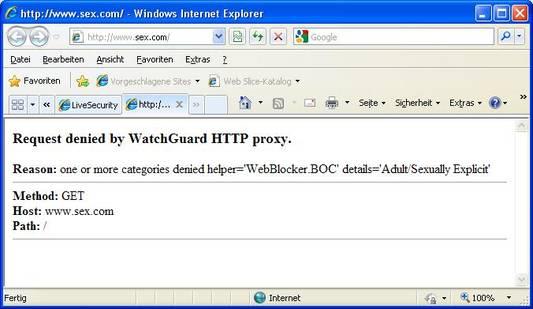 WebBlocker Standard-Fehlermeldung beim Zugriff auf eine gesperrte Website. Die Meldung kann durch eigene Texte (HTML) ergänzt werden.